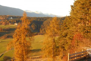 Herbst am Heideggerhof
