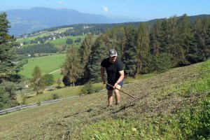 Bauer Erich wendet das Heu in steilem Gelände